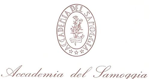 Logo nuovo Accademia